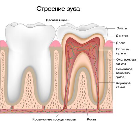 причины пульпита зуба